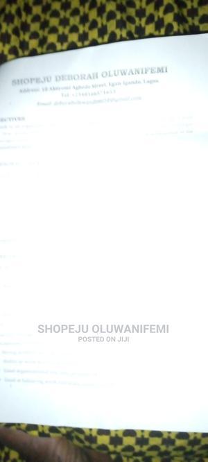 Healthcare & Nursing CV   Childcare & Babysitting CVs for sale in Ogun State, Remo North