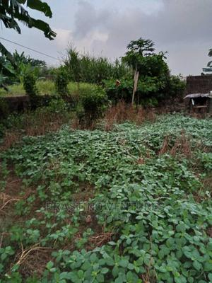 Half Plot of Land   Land & Plots For Sale for sale in Alimosho, Akesan