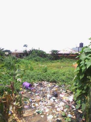One Plot of Land for Sale   Land & Plots For Sale for sale in Port-Harcourt, Rumolumeni