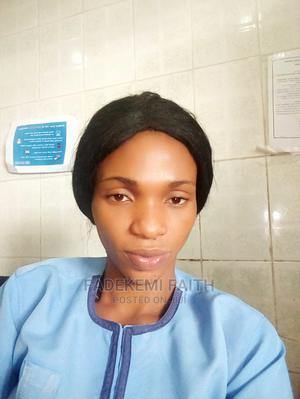 Healthcare Nursing CV   Healthcare & Nursing CVs for sale in Lagos State, Ikotun/Igando