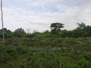 A Plot of Land for Sale   Land & Plots For Sale for sale in Oyo State, Ibadan