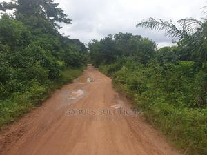 120 Acres Dry Land at Imokun Epe Village | Land & Plots For Sale for sale in Lagos State, Epe