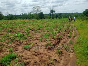 1 Acre Of Land For Sale At Moniya,Ibadan   Land & Plots For Sale for sale in Oyo State, Ibadan