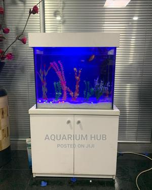 2ft Standing Aquarium   Fish for sale in Lagos State, Ogba