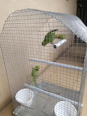 Handmade Parrot Cage | Pet's Accessories for sale in Lagos State, Alimosho