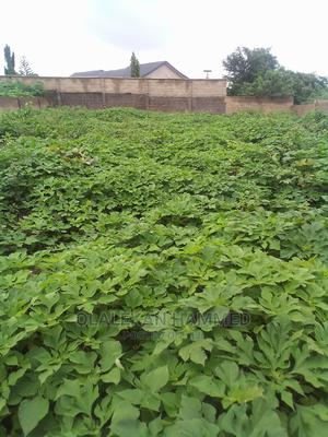 A Plot of Land | Land & Plots For Sale for sale in Oyo State, Ibadan