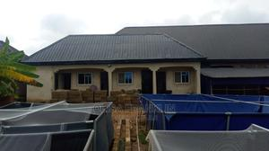 Well Elaborated Fish Farm Business in Asaba | Commercial Property For Sale for sale in Delta State, Oshimili South