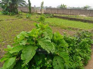 517sqm Land for Sale at Osongama Estate | Land & Plots For Sale for sale in Akwa Ibom State, Uyo