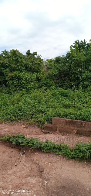 Land for Sale Measuring 50ft by 100ft in Auchi, Edo State   Land & Plots For Sale for sale in Edo State, Auchi