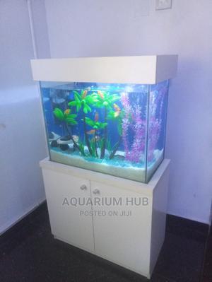 Portable Standing Aquarium   Fish for sale in Lagos State, Ikeja
