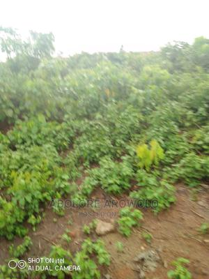 Residential and Farmland   Land & Plots For Sale for sale in Ogun State, Abeokuta South