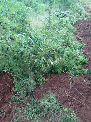 Plots of Land in Isokan Estate, Off Akala Expressway   Land & Plots For Sale for sale in Ibadan, Akala Express