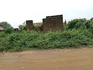 60/60 Land 4U at Alakia. Olosan Surround With Homes   Land & Plots For Sale for sale in Ibadan, Alakia