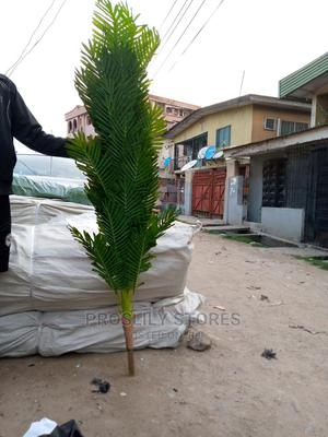 Palm Flower | Garden for sale in Lagos State, Ipaja