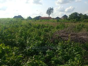 500 Acres of Land Beside Ajayi Crowther University Oyo   Land & Plots For Sale for sale in Oyo State, Oyo