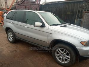 BMW X5 2004 3.0i Sports Activity Silver   Cars for sale in Imo State, Owerri