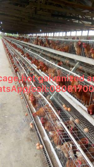 Battery Cages   Livestock & Poultry for sale in Lagos State, Alimosho