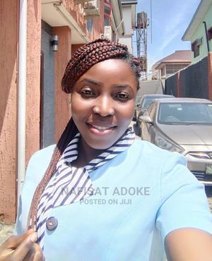 Healthcare & Nursing CV   Healthcare & Nursing CVs for sale in Lagos State, Gbagada
