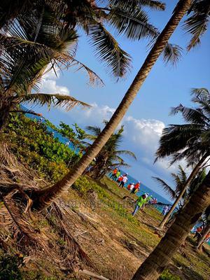 Commercial Beach Front Land for Sale in Eleko Ibeju Lekki. | Land & Plots For Sale for sale in Ibeju, Eleko