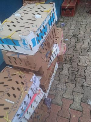 Day Old Chicks Broilers | Livestock & Poultry for sale in Kogi State, Lokoja