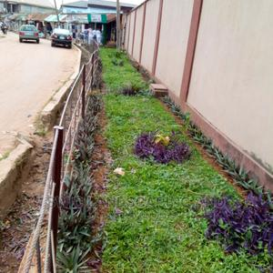 Garden Construction   Landscaping & Gardening Services for sale in Lagos State, Ajah