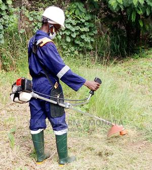 Mr Adeniji Mutiu | Landscaping & Gardening Services for sale in Lagos State, Alimosho