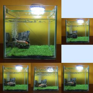 Complete Medium Size Cube Aquarium - 12 By 12 By 12 Inches | Fish for sale in Lagos State, Surulere