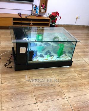 Standard Aquarium | Fish for sale in Lagos State, Surulere