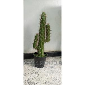 Lovely Artificial Faux Potted Cactus Plant for Sale   Garden for sale in Lagos State, Ikeja