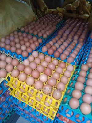 Crates of Eggs   Livestock & Poultry for sale in Lagos State, Abule Egba