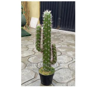 Artificial Cactus Plant for Sale|60cm | Garden for sale in Lagos State, Ikeja