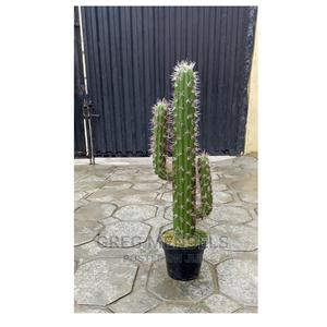 Fake Cactus Plant With Black Pot for Sale | Garden for sale in Lagos State, Ikeja