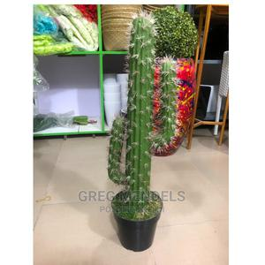 Radiant Artificial Cactus Plant for Sale in Lagos-Ikeja | Garden for sale in Lagos State, Ikeja