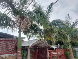 Private Garden for Rent in Asokoro | Event centres, Venues and Workstations for sale in Abuja (FCT) State, Asokoro