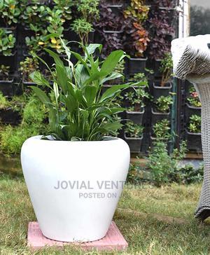 Fiber Glass Pot   Landscaping & Gardening Services for sale in Lagos State, Ikorodu