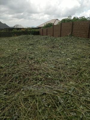 A Plot of Land at Arikinsin, Elebu Area, Ibadan | Land & Plots For Sale for sale in Ibadan, Akala Express