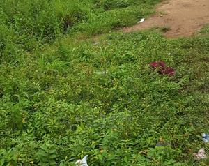 Land Property | Land & Plots For Sale for sale in Ibadan, Ibadan Polytechnic/University of Ibadan
