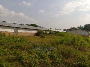 3bdrm Farm House in Shonekan Estate, Ado-Odo/Ota for Sale | Houses & Apartments For Sale for sale in Ogun State, Ado-Odo/Ota