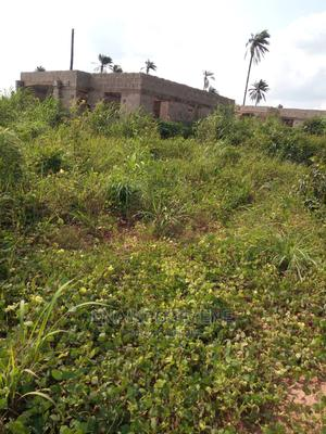 Land for Sale   Land & Plots For Sale for sale in Delta State, Aniocha North