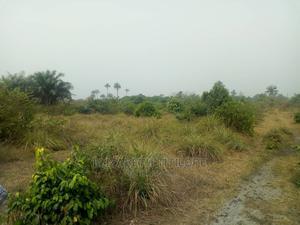 Certificate of Occupancy | Land & Plots For Sale for sale in Ibeju, Eleko