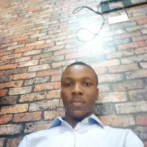 Computing IT CV | Computing & IT CVs for sale in Rivers State, Obio-Akpor