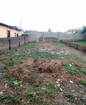 Certificate of Occupancy | Land & Plots For Sale for sale in Lagos State, Ifako-Ijaiye