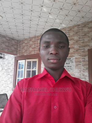 Chukwu Nathaniel Cv   Other CVs for sale in Delta State, Ukwuani