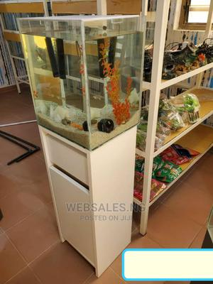 Top Aquarium With All Accessories | Fish for sale in Lagos State, Surulere