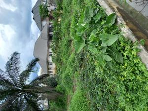 Plots of Land for Sale | Land & Plots For Sale for sale in Port-Harcourt, Eneka
