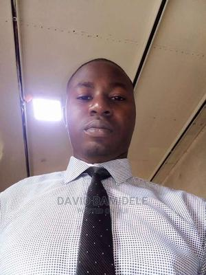 Transport Manager (Haulage) | Logistics & Transportation CVs for sale in Lagos State, Isolo