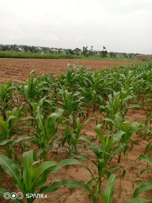 Plots Of Land For Sale | Land & Plots For Sale for sale in Nasarawa State, Karu-Nasarawa