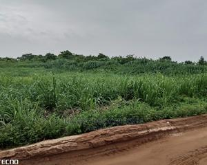 Receipt and Survey   Land & Plots For Sale for sale in Ogun State, Obafemi-Owode