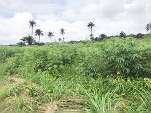Cheapest Land In Lagos Acres Of Gold Epe Lagos | Land & Plots For Sale for sale in Epe, Epe