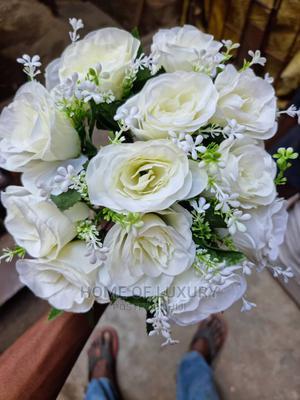 Cream Rose Flower | Garden for sale in Lagos State, Ojo